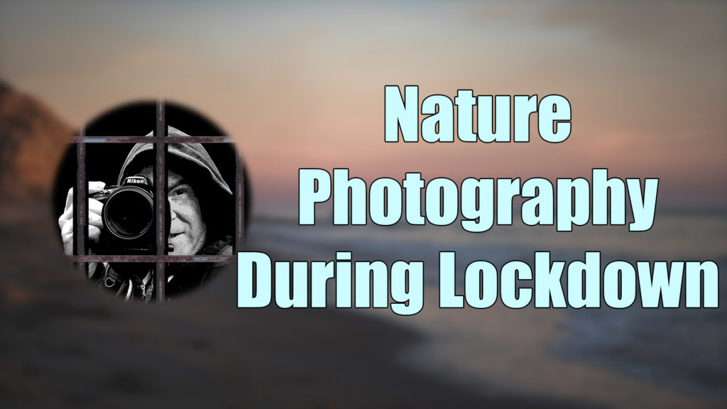 Nature Photography During Lockdown